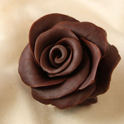 Chocolate Rose!