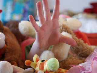 WOW Writing Prompt by Wendy Strain with photo by Emergent Properties of Soft Toys